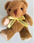 Wicklow Hospice - Teddy